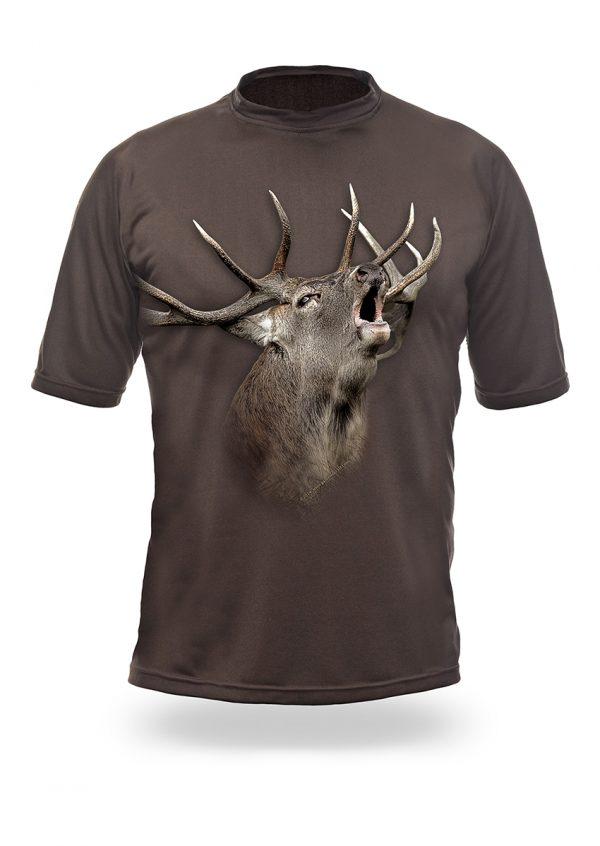 1001-001-Elk